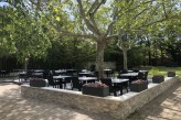 Hôtel les Oliviers à loriol sur drome - Terrasse déjeuner