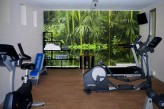 Hôtel les Oliviers à loriol sur drome - Salle Fitness
