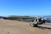 Hôtel Spa du Bery St Brevin - Plage de St Brevin - Serpent d ocean - Crédit TguioT- ville de Saint-Brevin-les-Pins