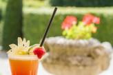 Château d'Augerville Golf & Spa - cocktail