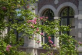 Hôtel Hermitage - Extérieur fleurs