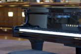 Hotel Vichy Spa les Célestins -  Piano