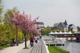 Les Célestins & Spa - Le parc