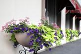 Hôtel la Jamagne & Spa - Enfilade de fleurs