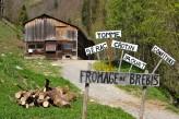 Résidence Radiana Appart Hôtel Rive droite -Village Celliers Bergerie du Chezalet