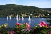 Hôtel la Jamagne & Spa - Lac  de Gérardmer printemps - été