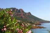 Hôtel Valescure Golf & Spa - Route de la Corniche d'Or à 7km de l'hôtel ©M.Angot