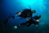 Hostellerie Berard & Spa - Plongee sous marine a Bandol a 10 km de l hotel