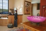 Hôtel les Violettes & Spa - la Réception