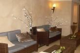 Hôtel les Violettes & Spa – Salon