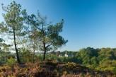 Rochefort-en-Terre : vue générale du château à 34km de l'hôtel le Roi Arthur @BERTHIER-Emmanuel