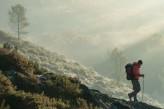 Forêt de Brocéliande Tréhorenteuc randonneur au Val sans Retour à 15km de l'hôtel le Roi Arthur @BERTHIER-Emmanuel