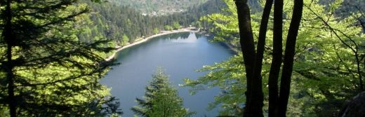 hotel la Jamagne vue Lac