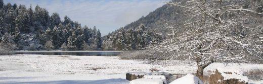 hotel la Jamagne Lac de Retournemer