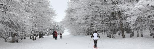 hotel la Jamagne skier dans les vosges