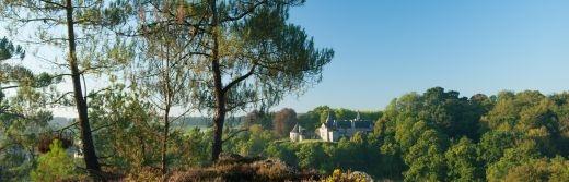 Rochefort-en-Terre-labellisé-Les-Plus-Beaux-Villages-de-France-vue-générale-du-château-de-Rochefort-en-terre. Bruyère-pins-et-ajoncs-situe-34km-de
