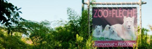 Zoo-de-la-Fleche